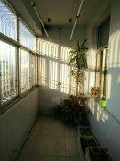 朝阳南区 118平方米 三室两厅 5楼  51.8万